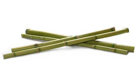 Green bamboo sticks isolated on white, side view © dule964