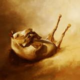 Fototapeta Horses - Arabian horse in dynamics, koń Arabski © Marcel