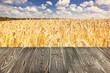 Rural background, template - horizontal surface of the boards on the background of wheat field with the sky, space for text