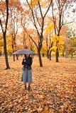 Pretty woman posing with umbrella in autumn park. Beautiful landscape at fall season. - 237502844
