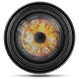 Digitales Kameraobjektiv mit Iris, Auge, freigestellt