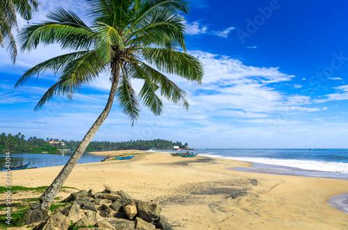 Tropical beach in Sri Lanka - 237543014