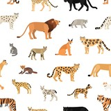 Seamless pattern with wild cats on white background. Backdrop with exotic carnivorous animals of Felidae family. Colorful vector illustration in flat cartoon style for wrapping paper, wallpaper.