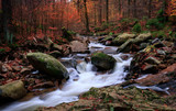 Cascading creek in Harz mountains with autumn colors / Herbstlicher Bachlauf im Harz (Ilsetal)