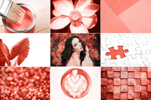 Leinwandbild Motiv Creative collage in Living Coral color. Main trend concept. Natural and authentic mood.