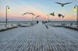 Quadro baltic nordic sea