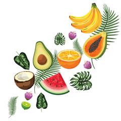 tropical fruits cartoon