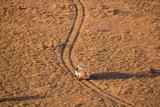 safari vehicle on savanna