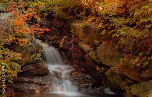 waterfall in autumn forest - 237667805