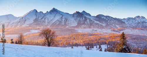 Panorama of winter Tatras