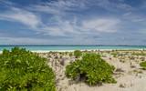 Sandbank Strand Atoll Insel Malediven - 237751820