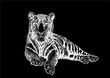 Graphical set of tigers isolated on black,vector tattoo illustration