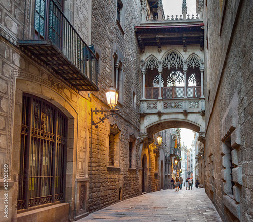 Pont del Bisbe, bridge of Barcelona, Catalonia, Spain - 237923059