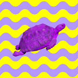 Minimal Contemporary collage. Purple turtle in colorful ocean vibes - 237932496