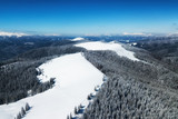 Aerial view at the winter forest and mountains. Pine trees as a background. Winter landscape from air. Natural forest background. Forest background from drone