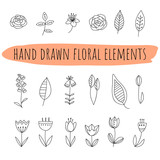 Set of doodle flowers and leaves. Hand drawn floral elements on transparent backdrop.