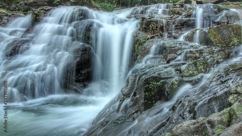 waterfall in forest - 237985688