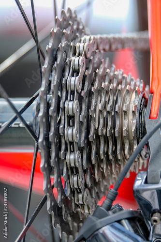 pignons de roue