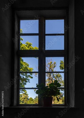 Old bid window. - 237993872