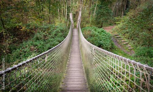 suspension bridge - 238017293