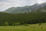 Summer day in the mountains
