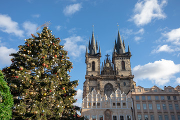 Christmas treeon Old Town Square in Prague
