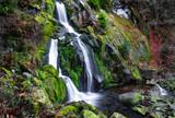 Trieberger Wasserfall im Herbst