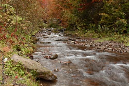 Foto Murales Mountain stream in autumn