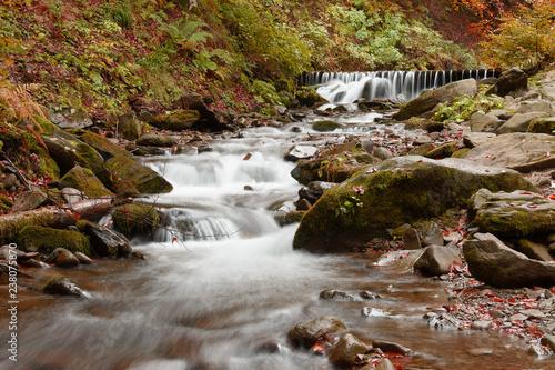 Górski potok jesienią