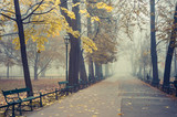Autumn foggy tree alley in the Planty park on a misty day in Krakow, Poland