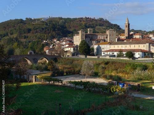 Foto Murales Monastero Bormida, Piemonte