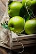 Quadro Green apples