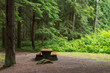 Campsite picnic table in Kleanza Creek Provincial Park, British Columbia, Canada