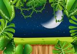 Fototapeta Fototapety na ścianę do pokoju dziecięcego - Forest frame at night © blueringmedia