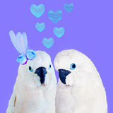 Minimal Contemporary collage art.  White parrots lovers. Valentine's day concept - 238163289