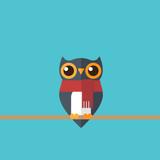 Cute festive owl © madedee
