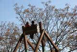 Niños de espalda en atracción de madera  - 238189876