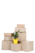 Cardboard boxes and yellow pot with green plant isolated on white background