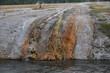 TERRASSES DE MAMMOTH HOT SPRING YELLOWSTONE NATIONAL PARK (WYOMING) USA