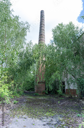 Cone-shaped tower in the forest. Chimney. Big and high chimney. - 238274098