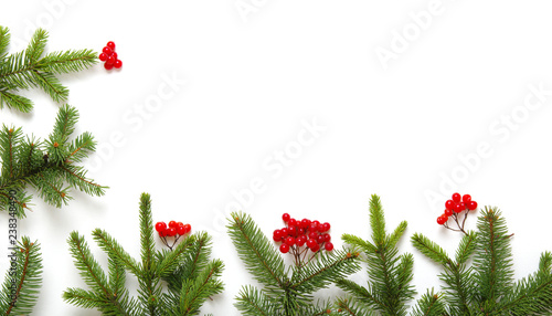 Foto Murales Fir tree branch isolated on white
