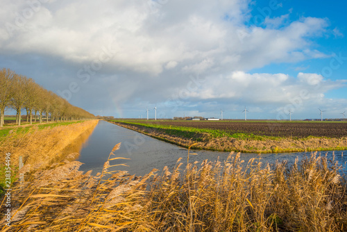 Foto Murales Shore of a canal meandering in a rural landscape in sunlight at fall
