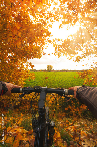 man with bike with trees in autumn