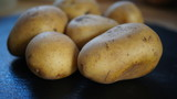 potatoes,potato, food, vegetable, fresh, isolated, potatoes, raw, agriculture, organic, white, healthy, root, vegetarian, brown, vegetables, diet, ingredient,