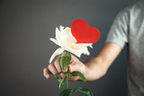 Man giving white rose with red heart.