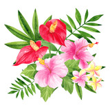 Watercolor illustration with tropical flower