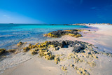 Elafonissi beach on Crete island with azure clear water, Greece, Europe - 238448899