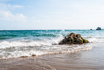 Living sea © Yuliya