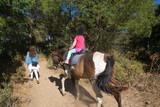 view from back of little four years old girl riding a horse next to her mother walking in a forest - 238520237