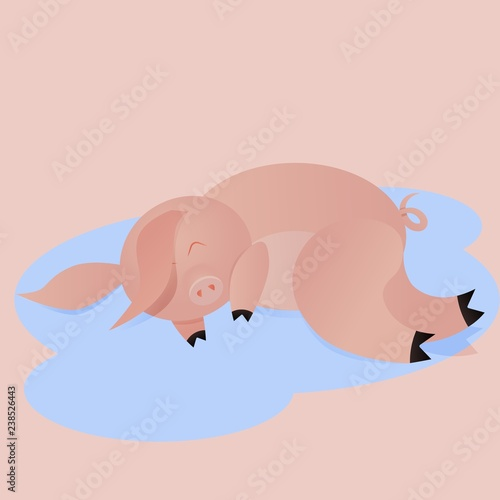 Bad pig, pig sleeping in a puddle, concept of antisocial behavior,
